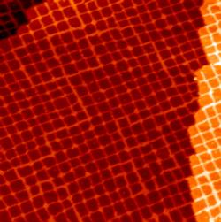 CuN nanostructures on a Cu(100) surface (100x100 nm)